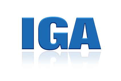 Gartner IGA Magic Quadrant Revealed